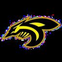 jagodina-black-hornets