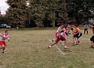 Seniorska fleg liga Srbije