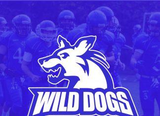 Novi Sad Wild Dogs 2021